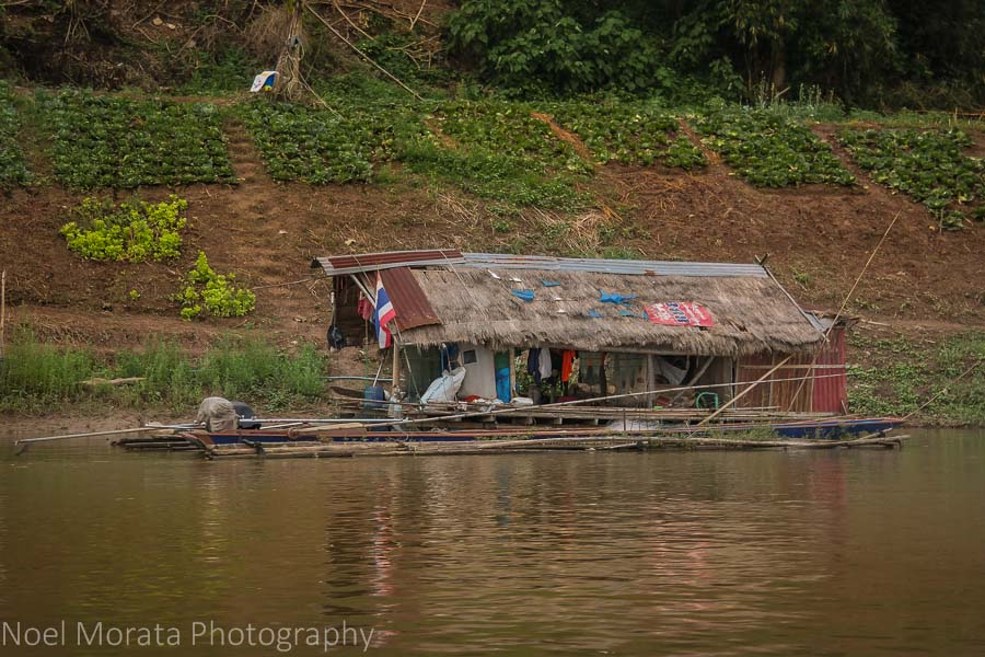 A small garden along the Mekong River