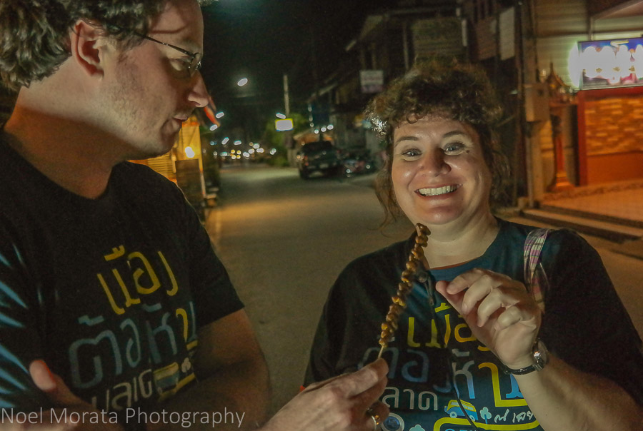 Tasting grilled insects and larvae at Chiang Khan