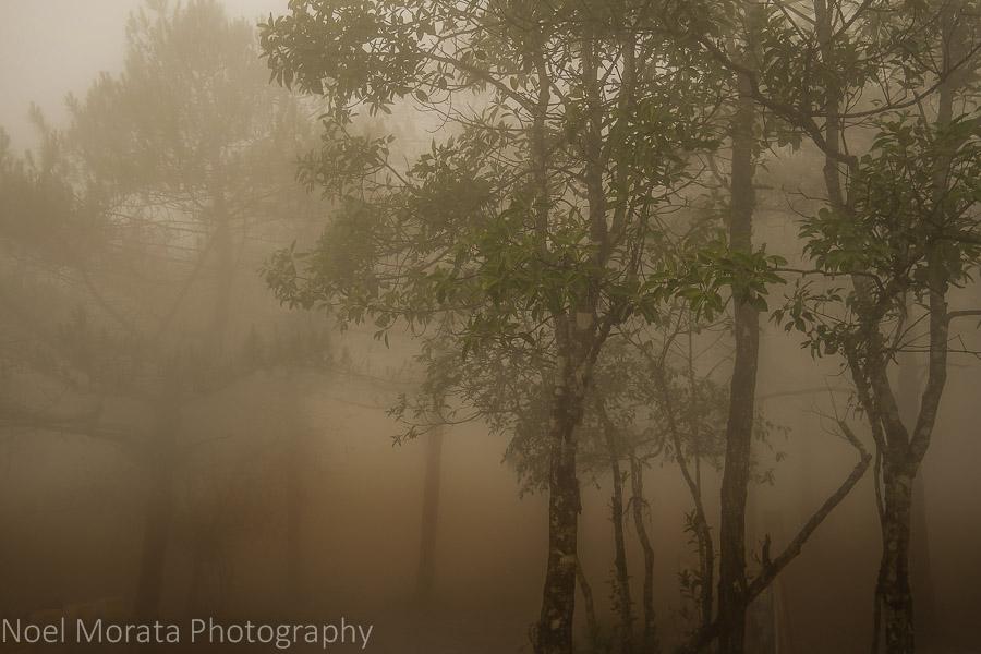 Phu Ruea National Park in a sea of fog