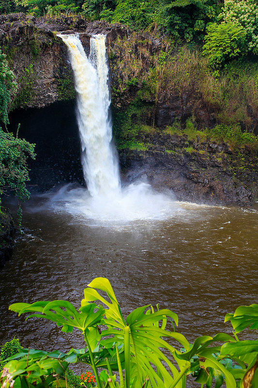 Rainbow falls trail in Hilo