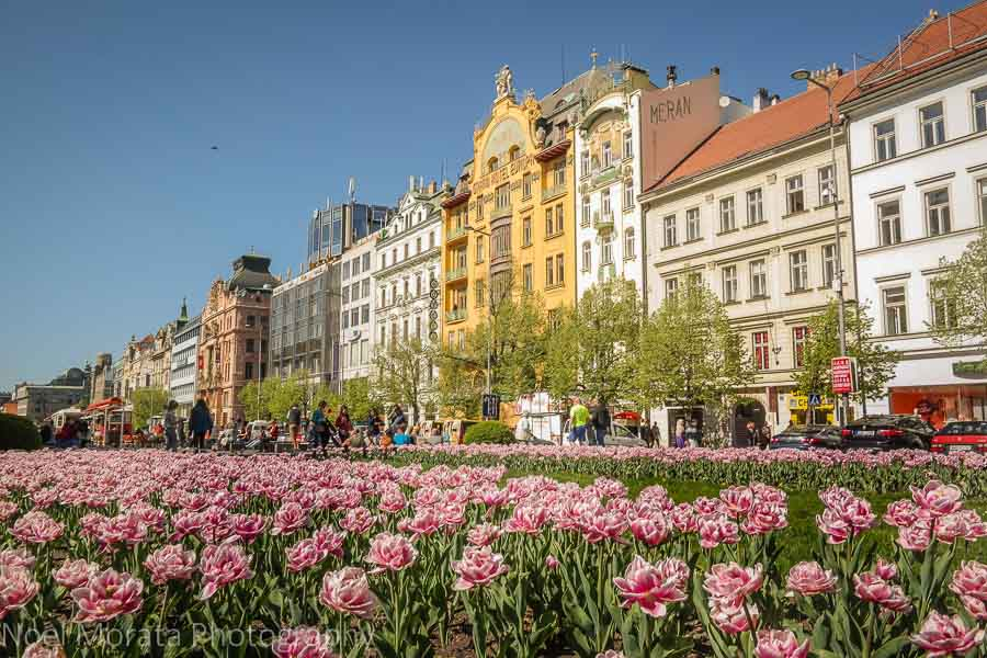 Touring Wenceslas square to our next foodie destination in Prague