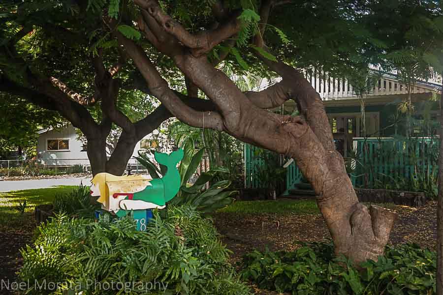 Walking the streets around Keauhou - Visiting Keauhou on the Big Island