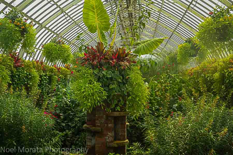 The elevated garden  at Phipps conservatory