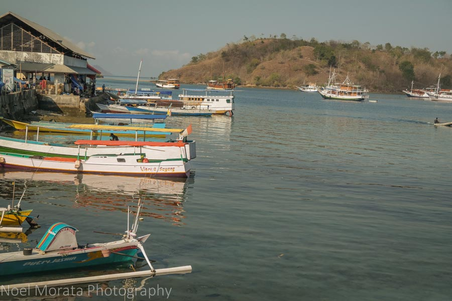 Tour boats and fishing vessels at Labuan Bajo - Visiting Komodo National Park