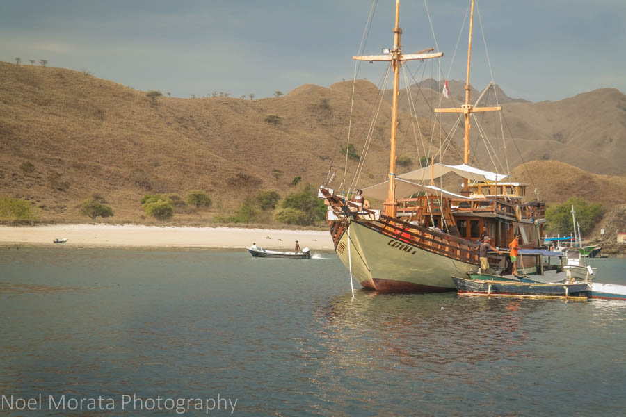 The pink sand beach at Komodo National Park