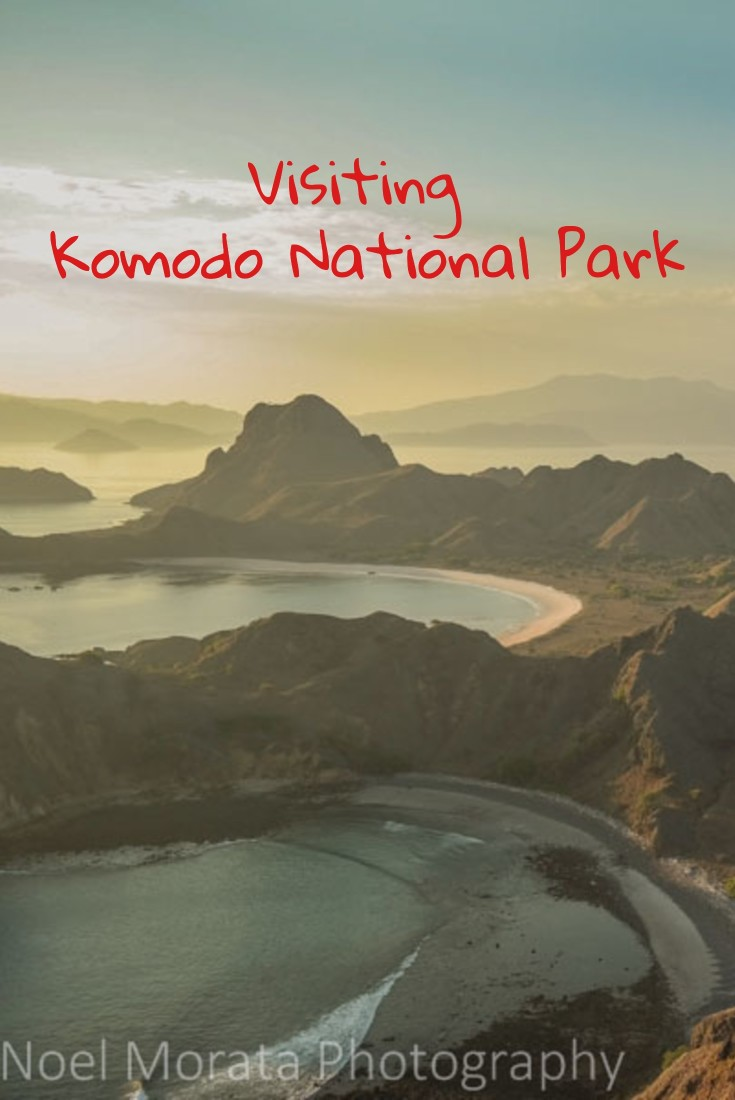 Visiting Komodo National Park