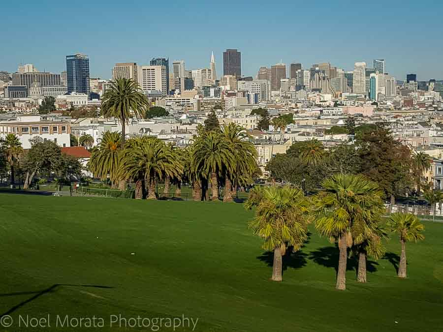 Looking at downtown San Francisco from Dolores park
