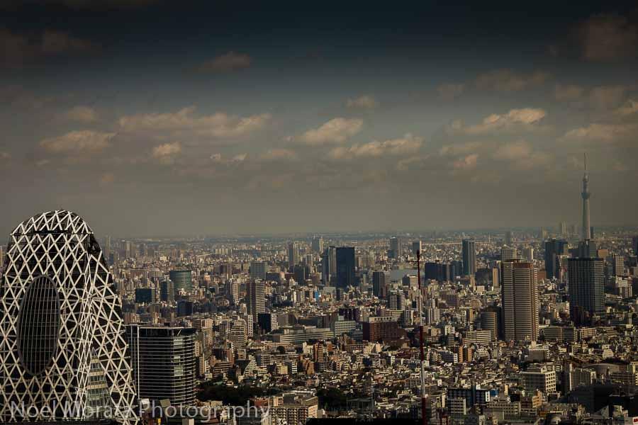 Tokyo Metropolitan Government buildings at Shinjuku