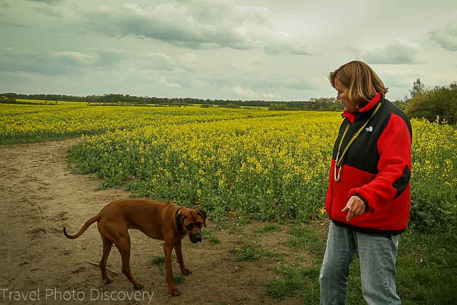 Walking the dog on the outskirts of Berlin Germany