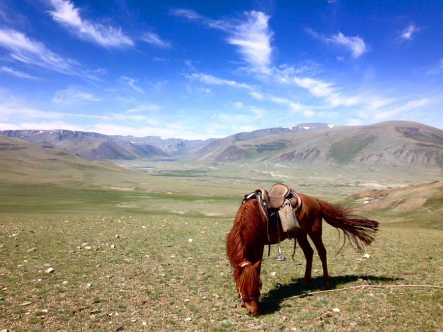 Adventure and eco experiences for 2017 horseback riding in Mongolia