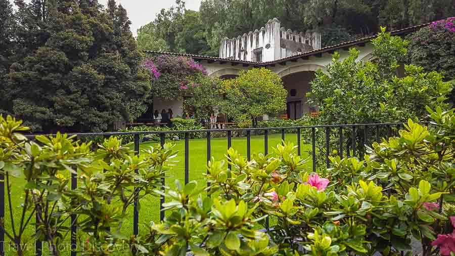 Outdoor gardens at the Museum of Dolores Olmedo