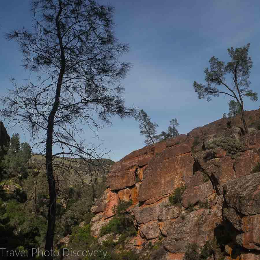 Interesting rock formations at Pinnacles National Park