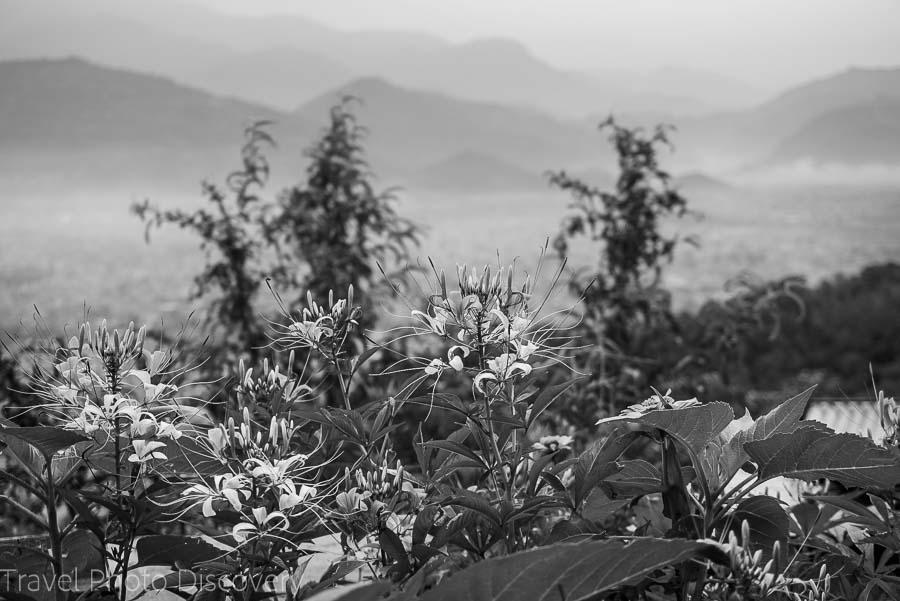 Beautiful gardens and views at the World Peace Pagoda above Pokhara