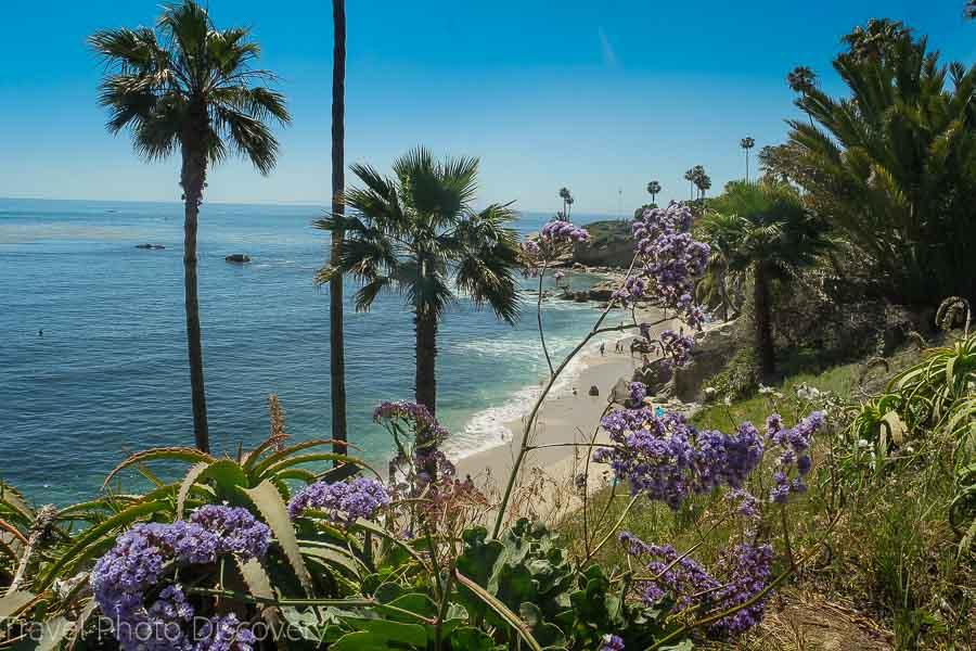 Exploring Laguna Beach coastal walk