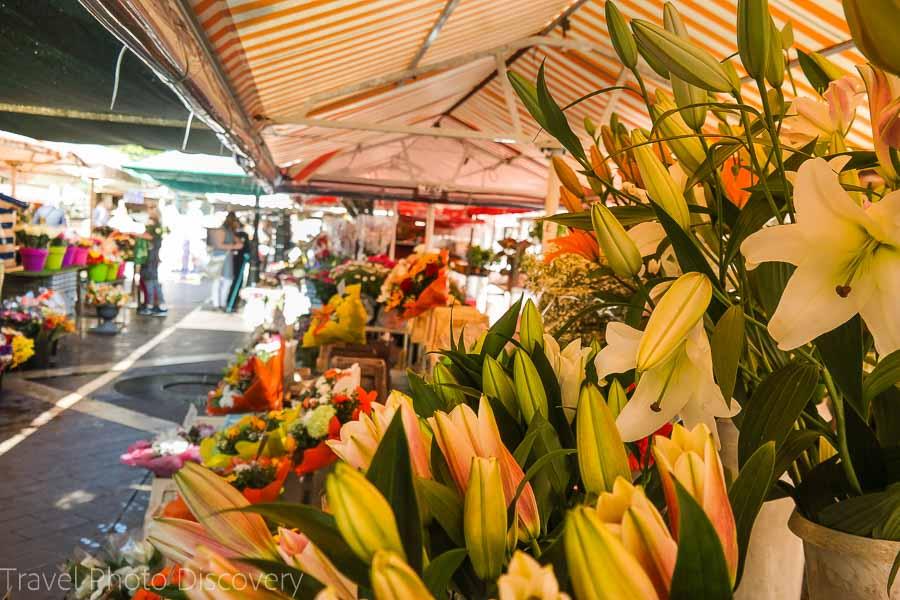 Exploring a farmers market in Paris, France