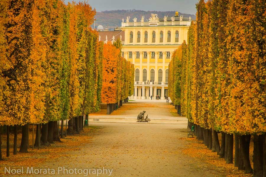 Schonbrunn in fall time