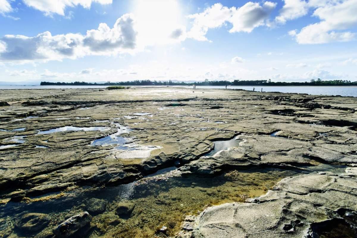 Cagbalete Island Bonsai Island