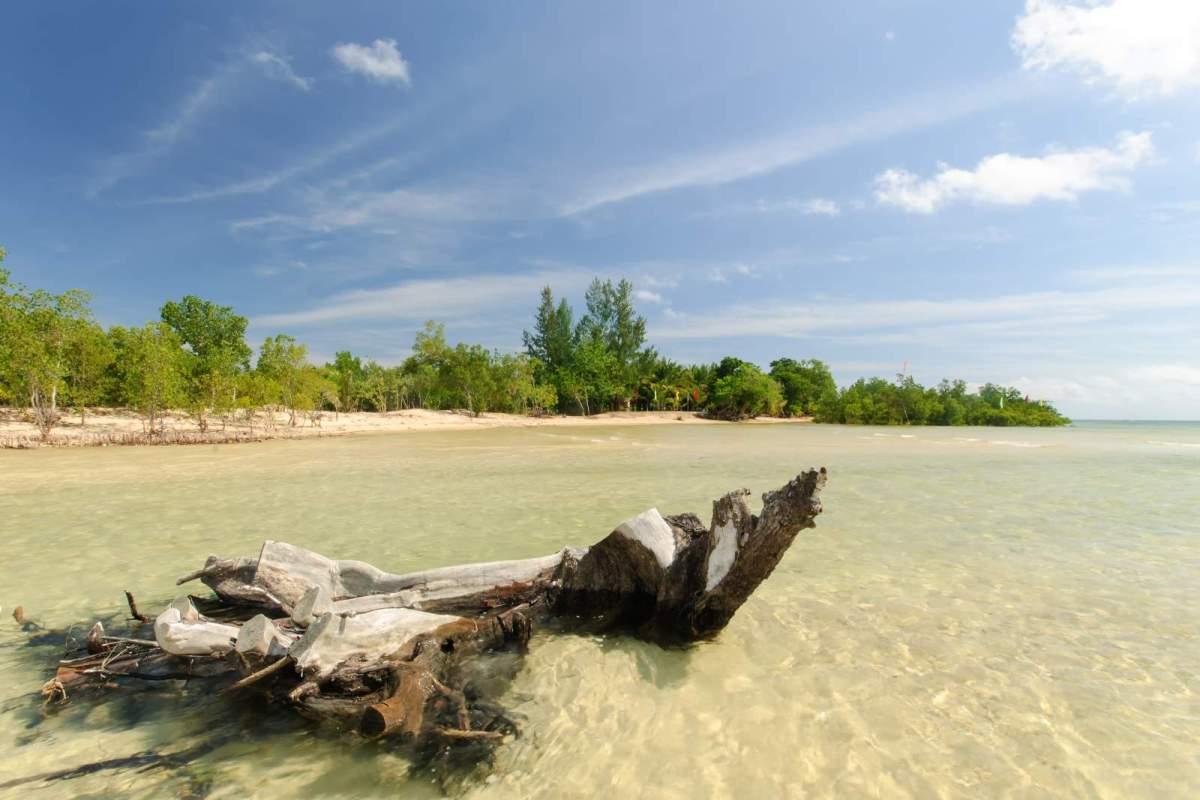 Near the estuary with MVT Sto Nino hidden in the treeline