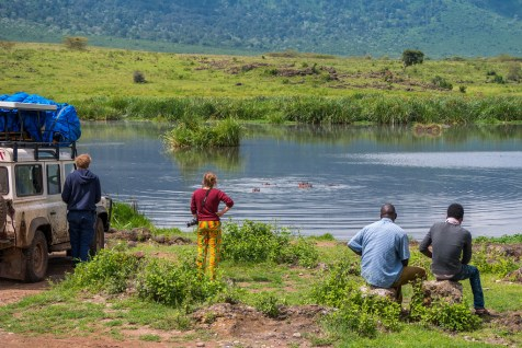 Ngoitokitok Spring hippos