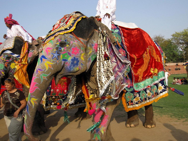 Elephants in Decorations