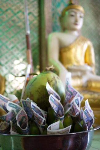 coconut offering at mt. popa bagan