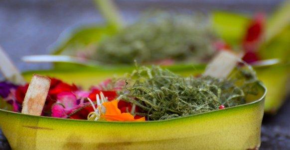 Canaag Sari