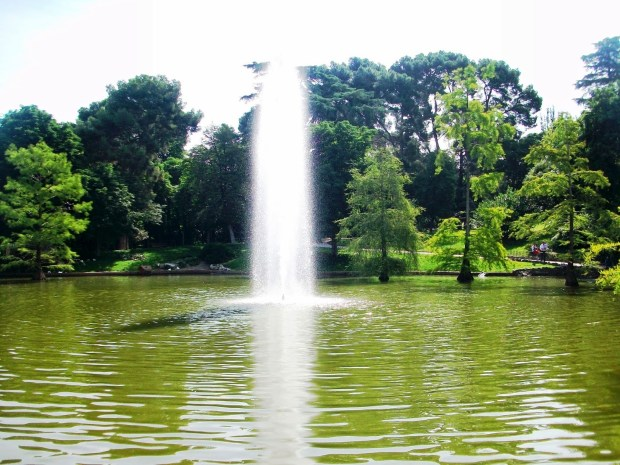 Madrid parque del retiro5