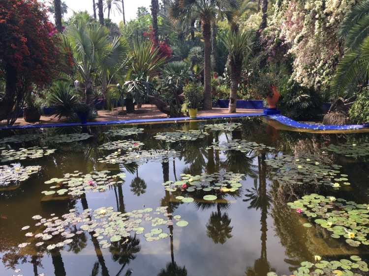 Marrakech Majorelle Garden