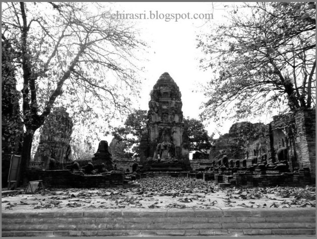 Wat Maha That in Ayutthaya