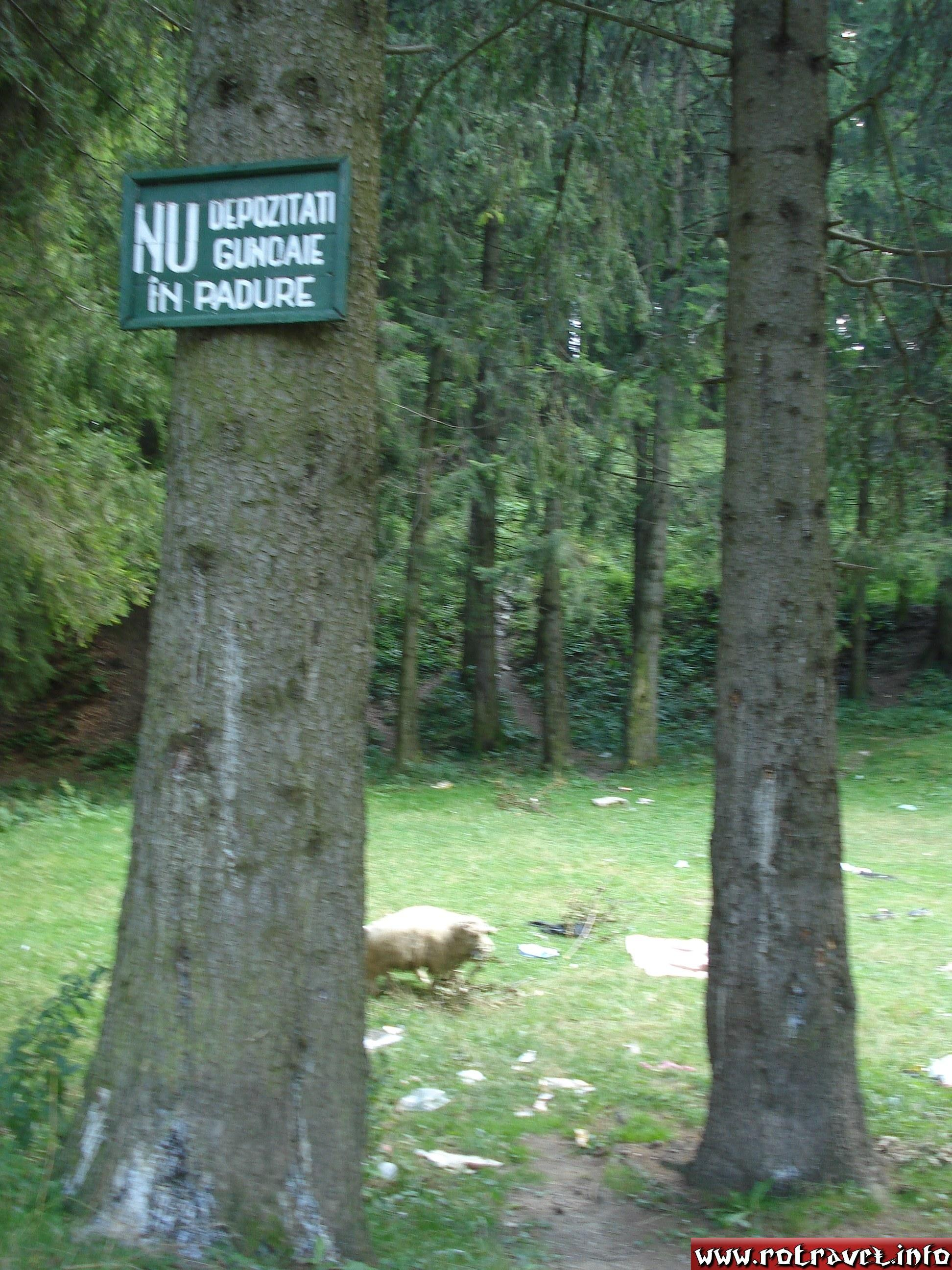 How to protect better the Nature (Do not throw the rubbish in the forest!).Unfortunately, this message is respected by all  the tourists.