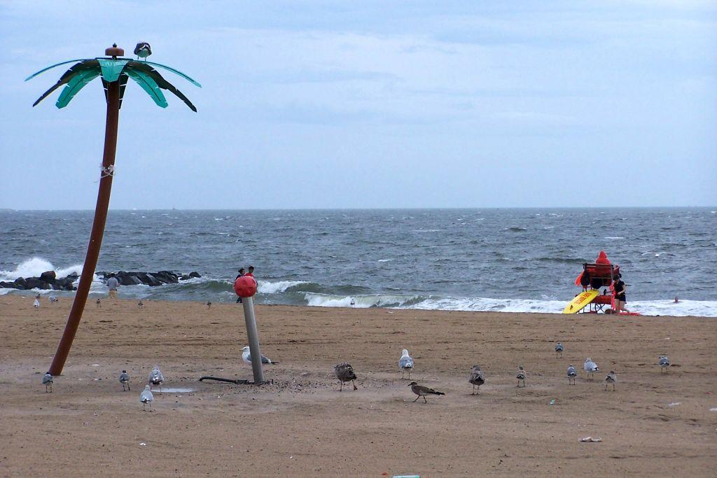 Beach Coney Island