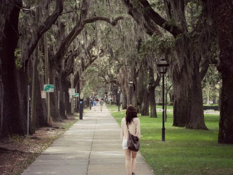Oak Alley Savannah