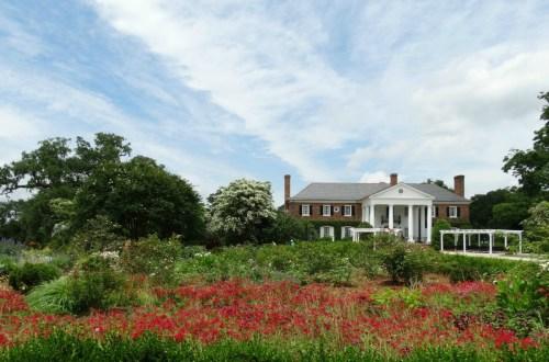 Boone Hall Plantation - Mont Royal aus Fackeln im Sturm