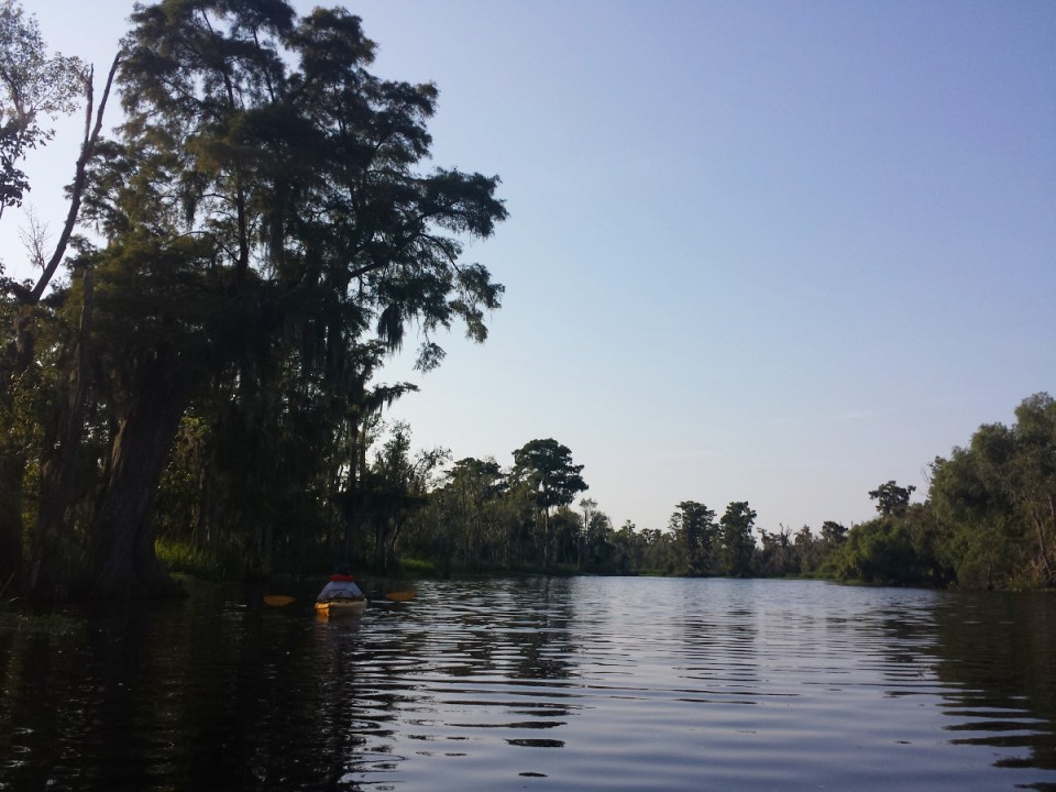 Kayak Sümpfe Louisiana