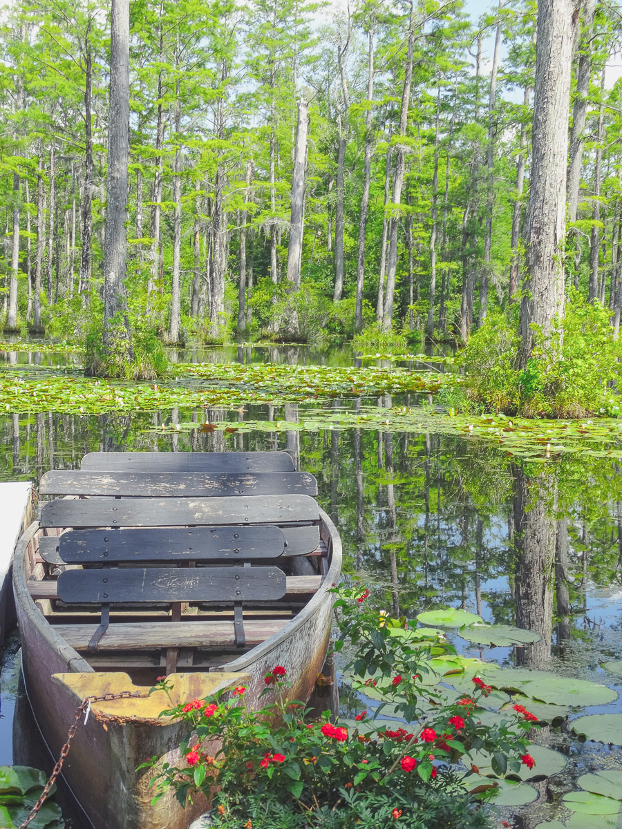 Romantische Idylle in Cypress Gardens South Carolina