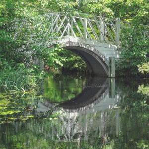 Cypress Gardens South Carolina kleine weiße Brücke spiegelt sich im dunklen Wasser