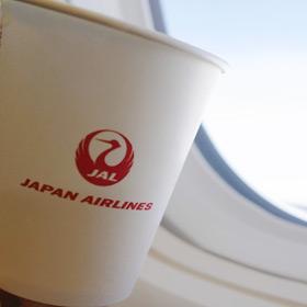 "JAL ""SINタッチ""電話で予約の流れをご紹介"