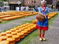A Cheesy Day in Alkmaar