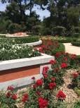 Rose Garden inside El Retiro