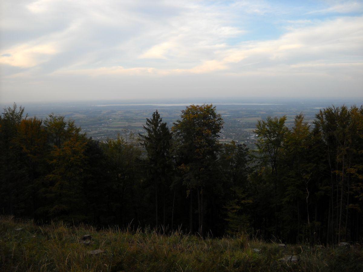 panorama z gory