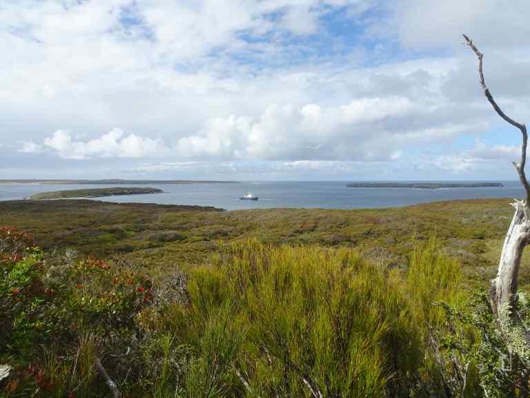 Coastwatcher station above Ranui Cove – Version 2