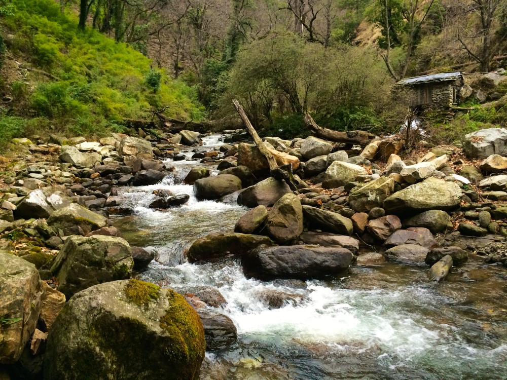Rupin Supin River.