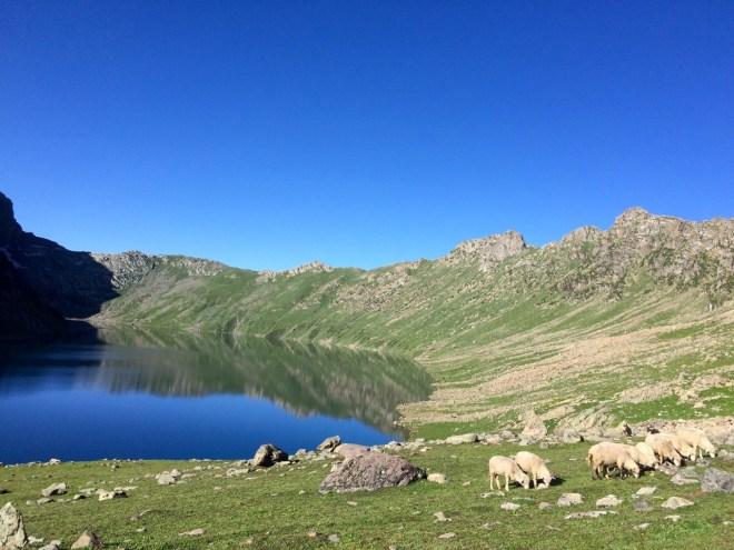 The almond shaped Tarsar Lake