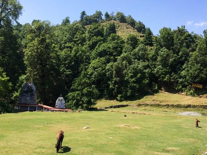 The tenth century temple of Binsar