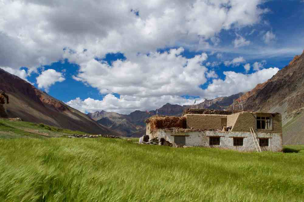 Pretty whitewashed mud and stone houses set amidst barley fields