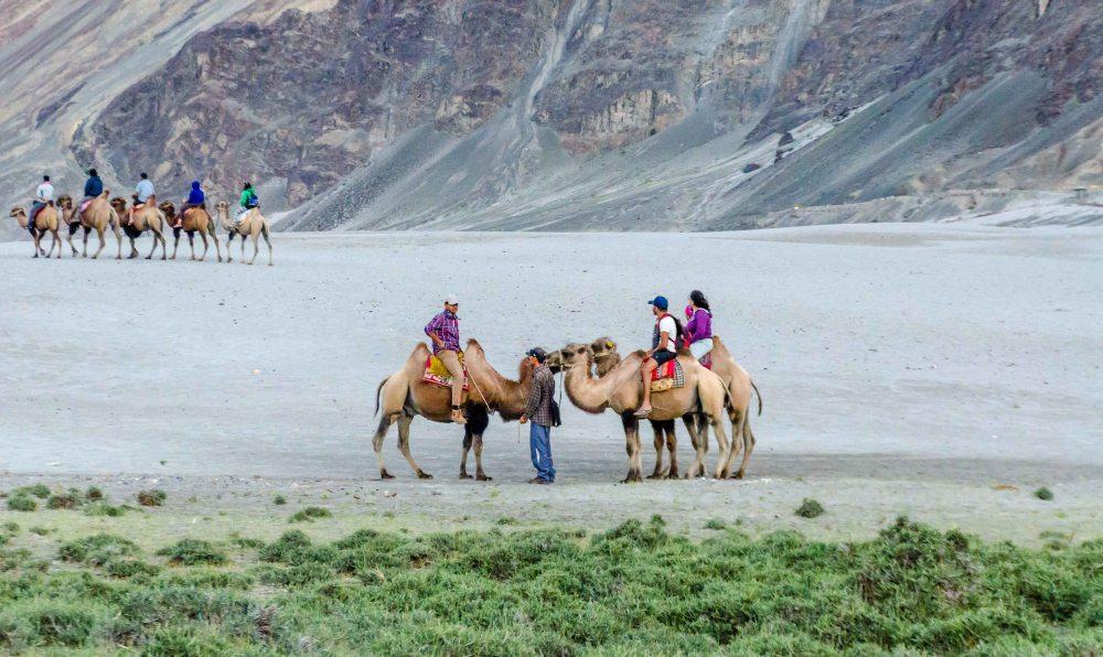Hunder Sand Dunes near Hunder Village