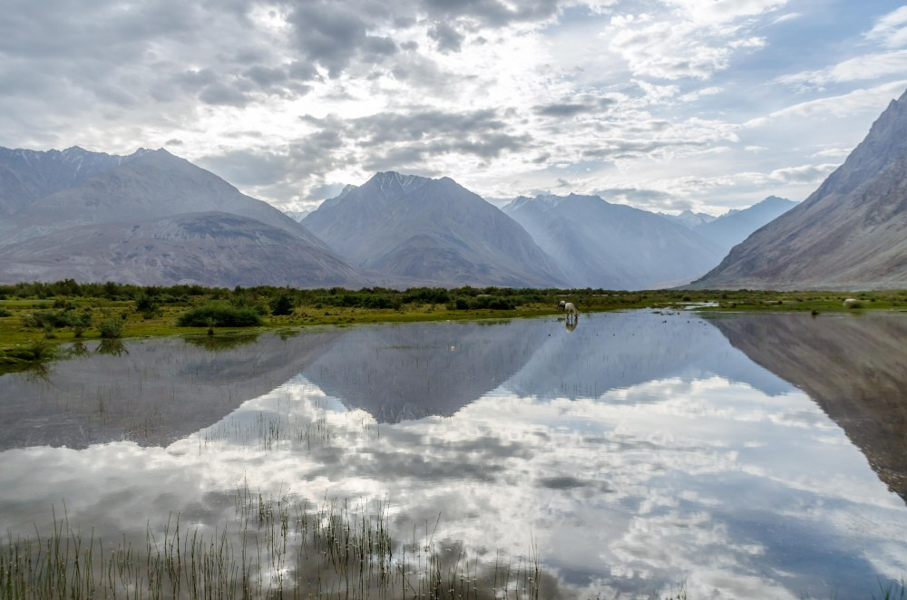 Reflections near Diskit, Nubra Valley Ladakh