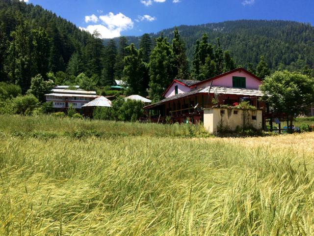 Pulga Village
