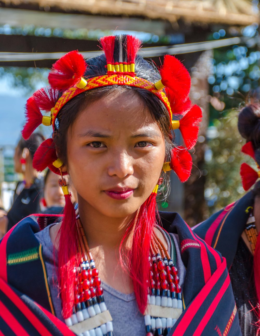 Tribes of Nagaland Hornbill Festival