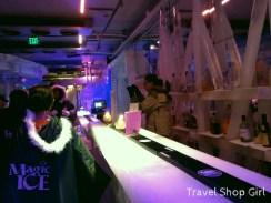 Ice bar at Magic Ice